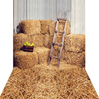 1.5x3m Canvas Haystack Backdrop Photography Backdrop For Children photo prop KP 006