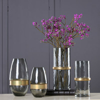 Glass Vase Home Simple Decoration European Metal Copper Ring Cold Gray Transparent Hydroponic Plant Flower Ornaments
