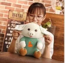 WYZHY New Year Gifts Gift of the Pig Mascot Down Cotton Doll Pillow Plush Toy Pink Green 30cm