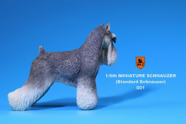 Mr.Z MRZ019 Simulation Animal 1//6th Miniature Standard Schnauzer Pet Dog Model