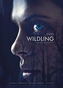 《野生狼性》2018年美国奇幻,恐怖电影在线观看