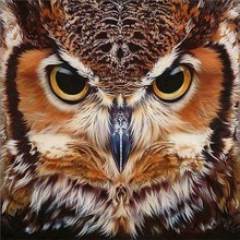 Diamond Embroidery Animal OWL Cross Stitch DIY Painting Horse Mosaic Rhinestones Home Decor