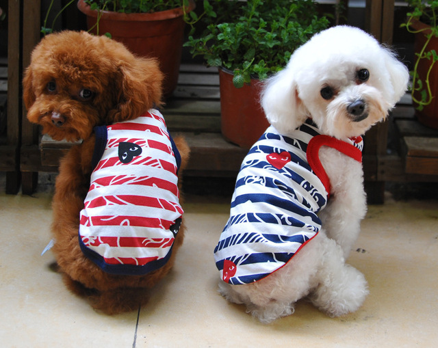 2b5a6f3eef3b Pet dog clothes summer vest teddy/poodle summer wear T-shirt puppies puppy  clothes Clothing