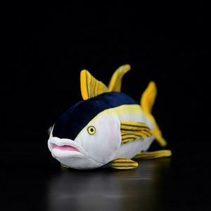 Image 2 - 40 センチメートル実生活マグロぬいぐるみリアルな海の動物魚ぬいぐるみ子供のためのぬいぐるみのおもちゃ & ホビー