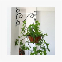 European Style Wall Hanging Flowerpot Bracket Iron Flower Stand Balcony Home Decoration Iron Plants Pots Hooks