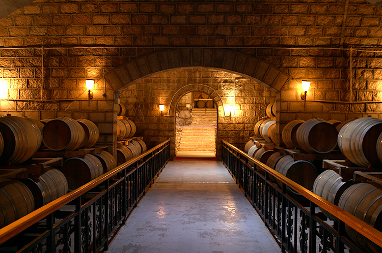 Popular Red Wine Cellar Buy Cheap Red Wine Cellar Lots