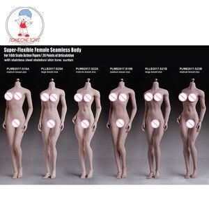 Image 1 - TBLeague 1/6ผู้หญิงBody Figurine Pale Suntanผิวไม่มีรอยต่อหญิงรูปคอลเลกชันสำหรับ12นิ้วรูป