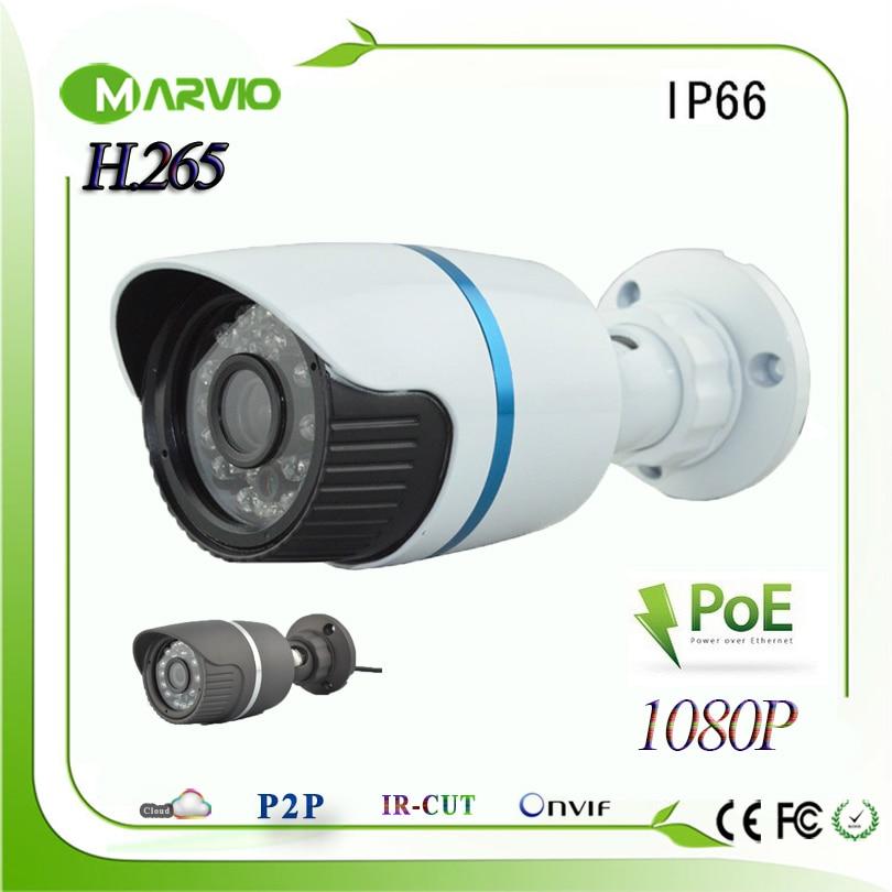ФОТО H.265/H.264 2MP Full HD 1080P IP Network Cameras POE CCTV Video Camera Surveillance System, IP66 Waterproof Outdoor Usage, Onvif