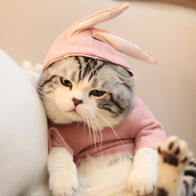 Cat-Costume Christmas-Suit Funny Halloween Rabbit-Style For Cats Dogs York Coverall Clothing