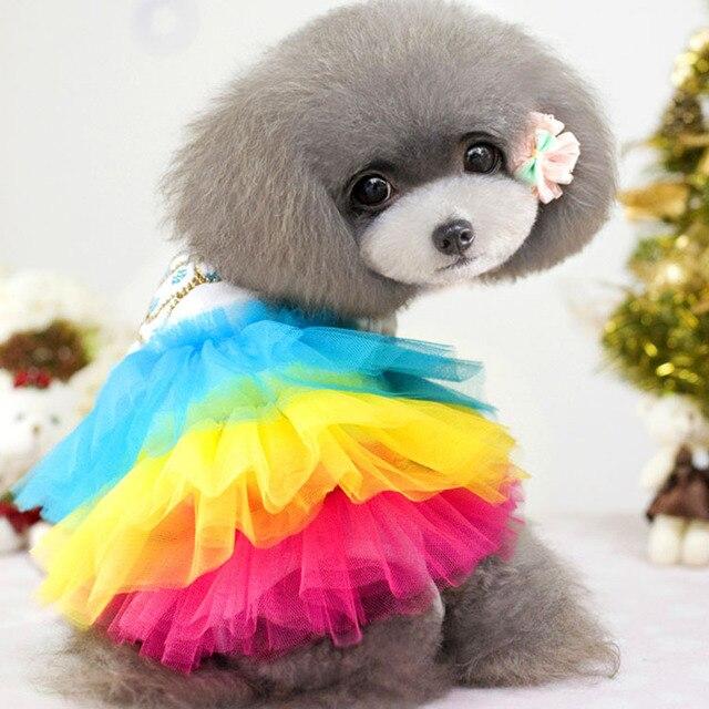 Aliexpress.com : Buy Rainbow cute girl pet dog clothes apparel ...