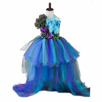 Princess Girls Peacock Party Dress Handwork Peacock Feather Baby Girls Ball Gown Trailing Dreshses For Photo props Birthday