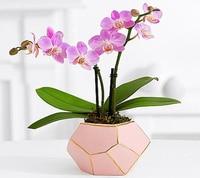 Diamond Pink Ceramic Vase Home Decoration Vase