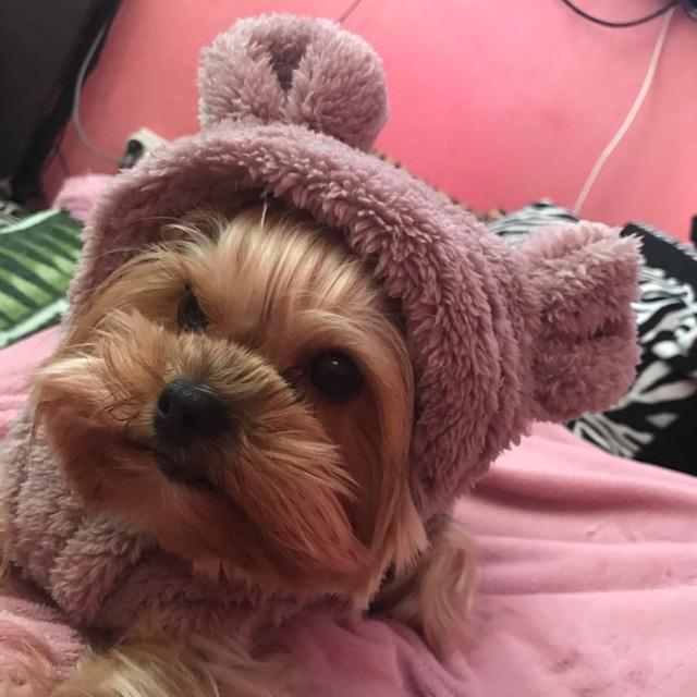 Fleece Cute Warm Jacket for Small Dogs