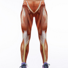 Plus Size Muscle Digital Printing Women's Fitness Leggings Workout Pants Ladies High Waist Leggins Quick-drying Skinny Trousers
