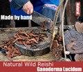Saúde Natural Reishi Cogumelo Autênticos Selvagens Ervas Lingzhi Ganoderma Lucidum Longevidade Chá Detox Chá de Ervas Saúde (500 g/saco)