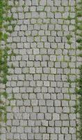 Oxford brick wall green grass photography backgrounds children Digital Printing photo backdrops