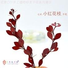 Flower Invitation Red Leaves Branch _  DIY Plant Glue Dried Specimens Handmade Bracelet Long branches