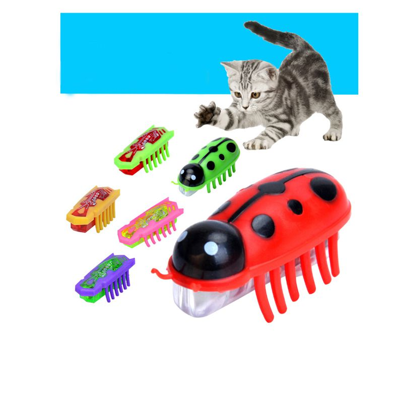 2019 Mini Electric Mouse Funny Catoy Blue Purple Green Pet Automatic Durable Mice Small Animalsoy Electric Mini Mouseeaseoy in Cat Toys from Home Garden