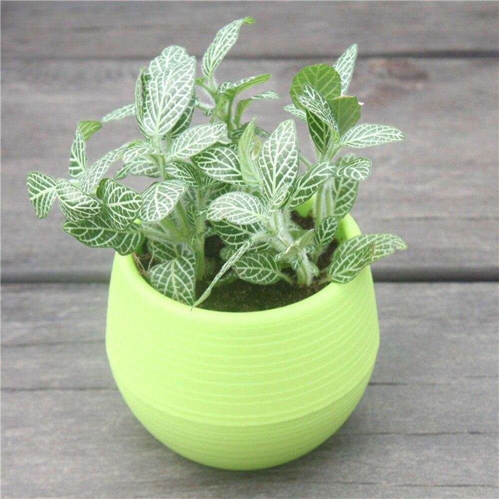 get cheap plastic pot planters aliexpress alibaba
