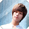 Light Brown Synthetic Boy Short Bob Wig Male Fluffy Hair  Handsome Student Wig Fast Shipping