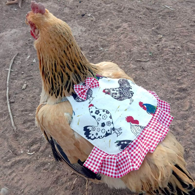 1PC Hen Saddle Apron Chicken Jacket Back Feather Protection Backyard Poultry