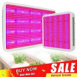 1600 W w 1200 W 400 W LED Luz de cultivo de espectro completo Luz de cultivo interior para plantas de invernadero verduras florecientes frutales
