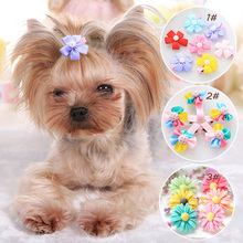 2pcs of Lovely dog hair bows / pins