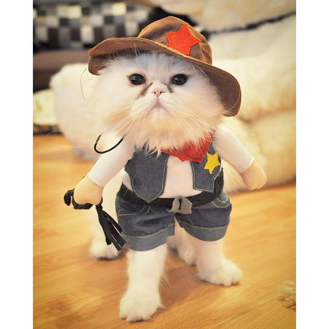 Funny Cat Costume Halloween Pet Cat Dog Clothes Creative Novelty Cat Kitten Clothes - Cowboy /  sc 1 st  AliExpress.com & Funny Cat Costume Halloween Pet Cat Dog Clothes Creative Novelty Cat ...