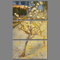 Big Size 3pcs Set Decoration Blossoming Pear Tree Wall Art Picture Van Gogh Poster Flowers Canvas