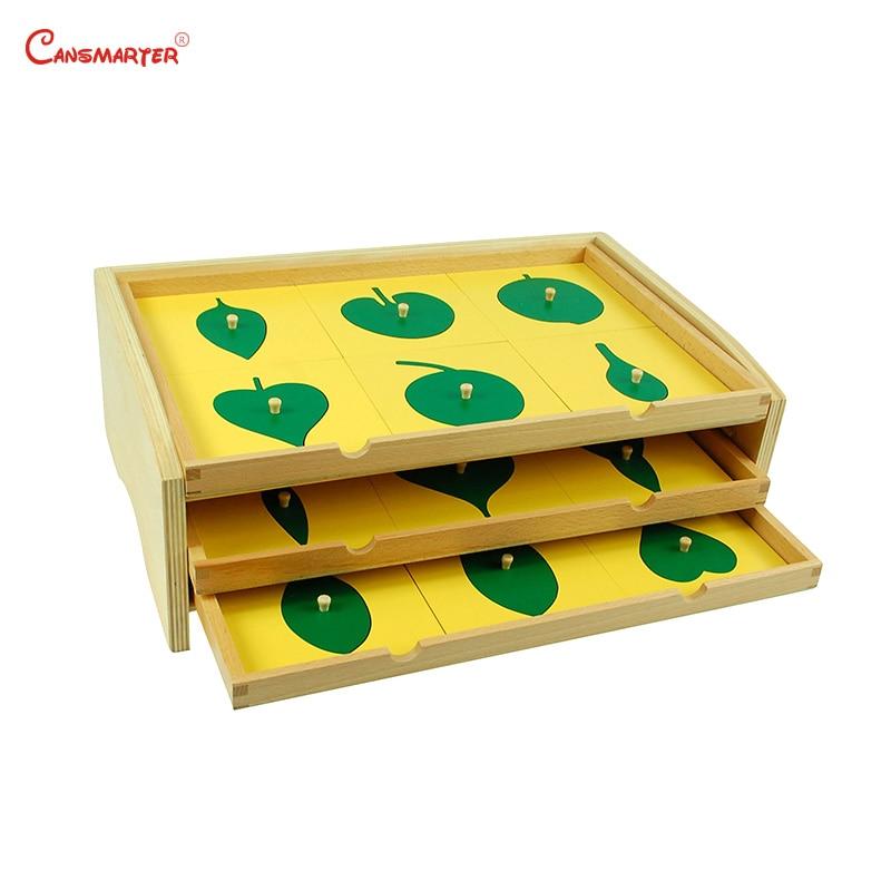 Botanica Foglia Armadio Puzzle Scatola di Legno Montessori Biologico Insegnamento Giocattoli Educazione Precoce Per Bambini In Età Prescolare Materiali BO055-NX3
