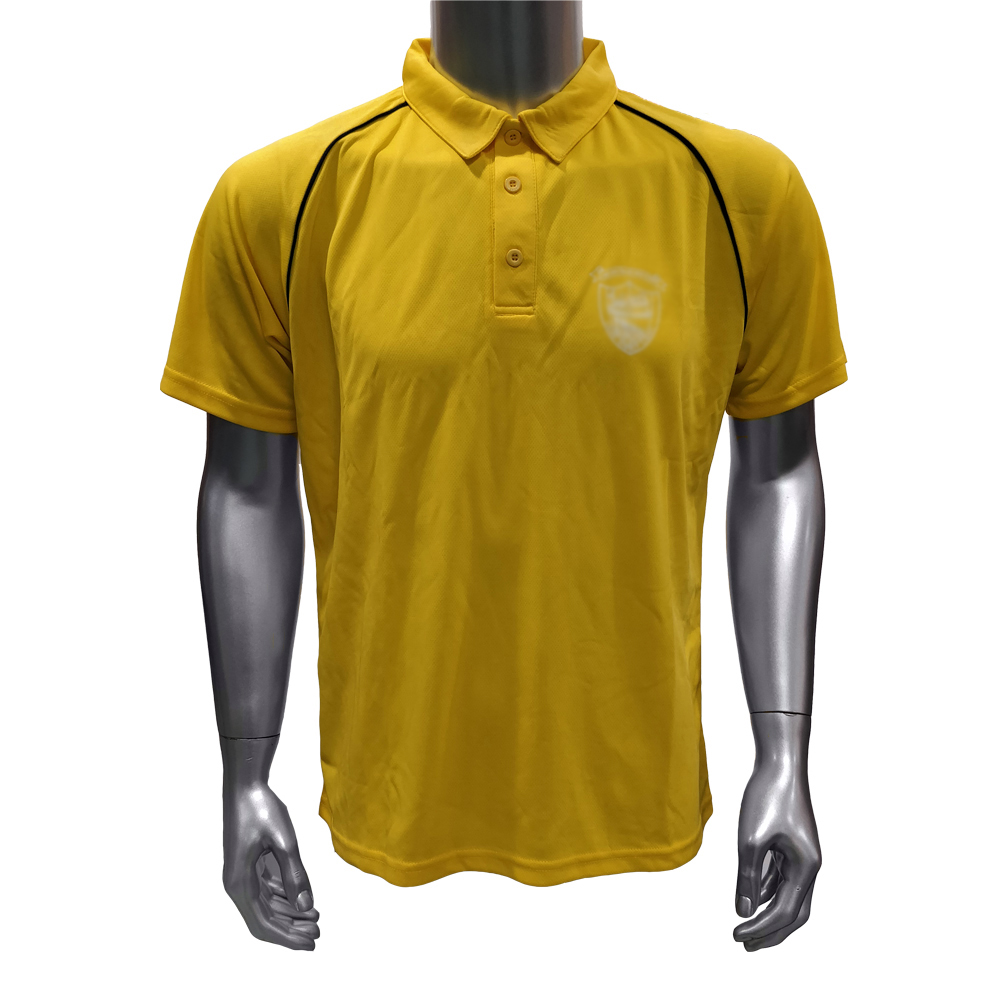 mans T-shirt Polo shirt free shipping in cheap price mixed colors shorts as gifts for small size shirt