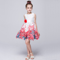 Girls Lace Dresses Summer 2016 High Quality Floral Flower Girl Dresses For Party And Wedding Princess