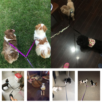 2 Way Pet Dog Nylon Coupler Leash No-Tangle Walking Double Lead Leashes For Two Small Dogs arnes perro harnais pour chien 1