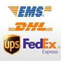 LZH China/Aramex/DHL/FedEx/ePacket/EMS/UPS/SF Express/USPS/TNT Porte Link