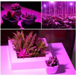 Image 5 - Diodo emissor de luz cresce o espectro completo 6w 10w 30w 50w 80w vermelho azul uv ir conduziu a lâmpada crescente para hidroponia flores plantas vegetais.