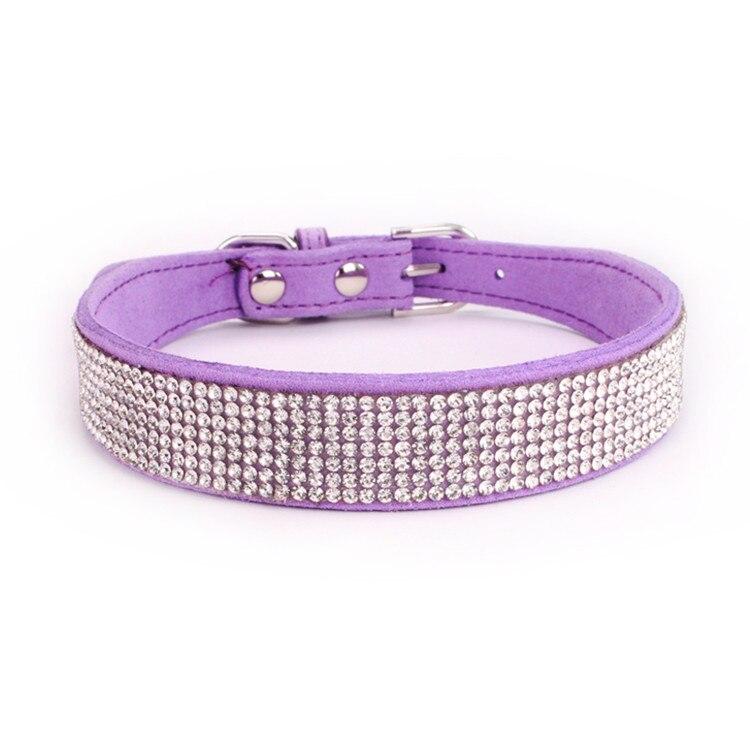 dogs collar (12)