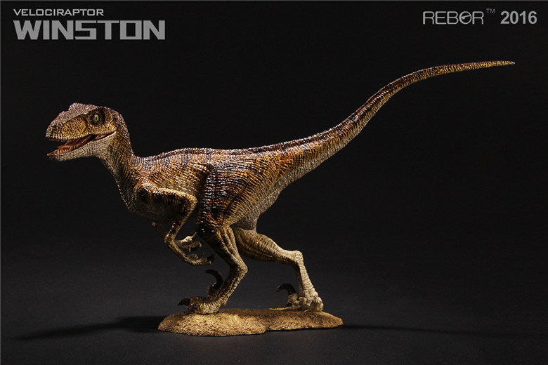 REBOR Velociraptor Winston PVC 1//18 Dinosaur Museum Class Model