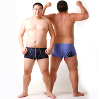 New Arrival! Bear Claw Paw Plus Size Men's Net Boxers Sexy Shorts Gay Bear Breathable Underwear Navy/Blue/Pink M L XL XXL