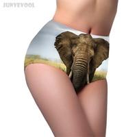 554c767a6 G String Sexy Lingerie Women Elephant Briefs High Waist Slim Body Brief  Underwear Panties Shapewear Women
