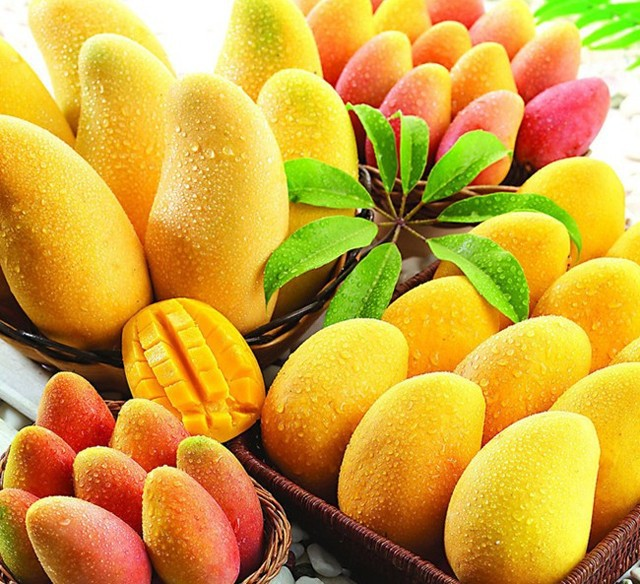 2 pcs/bag mango seeds,mango tree seeds,Organic Heirloom vegetable fruit seeds,so sweet,plant for home garden