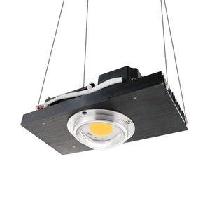 Image 2 - CREE CXB3590 COB LED Grow Light Spectrum เต็ม 100W 200W CITIZEN LED Plant Grow โคมไฟสำหรับเต็นท์ในร่มเรือนกระจก Hydroponic พืช
