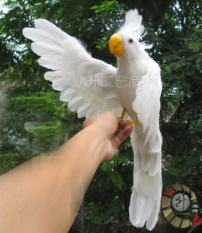 simulation white Cockatoo parrot large 40cm spreading wings feathers parrot toy model home decoration Christmas gift h1122 large 30x25 cm simulation cat model toy lifelike white cat model home decoration gift t178