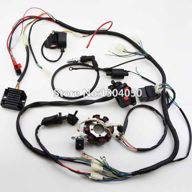 250cc 300cc Wiring Harness - Wiring Diagram G8 on 200cc enduro dirt bike, lightest 250 dirt bike, zongshen 200 dirt bike, ktm electric dirt bike, ktm 70cc dirt bike, zongshen 125cc dirt bike black, baja warrior 90cc dirt bike, ktm 450cc dirt bike, baja 150cc dirt bike, zongshen motorcycle, loncin 110 dirt bike,