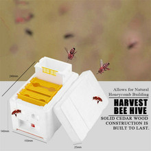 Домашний улей коробка для сбора урожая пчелиный улей Пчеловодство королевская коробка для опыления инструмент для пчеловодства Урожай пчелиный улей твердый кедр Пчеловодство