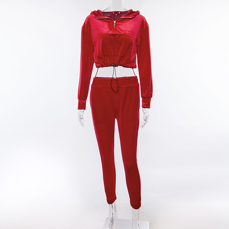 3d8b1c0d5874 SEXEMARA Sexy Velvet Tracksuit Women Long Sleeve Cropped Hoodie and Pants Two  Piece Set 2019 Autumn Winter Sweat Suits C83 BB40-in Women s Sets from  Women s ...