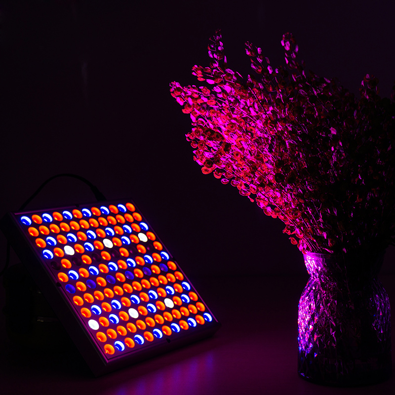 LED Plant Full Spectrum Grow Lamp 85-265V 45W 144leds Square Panel EU US Plug UV IR Lighting For Greenhouse Indoor Plants Growth