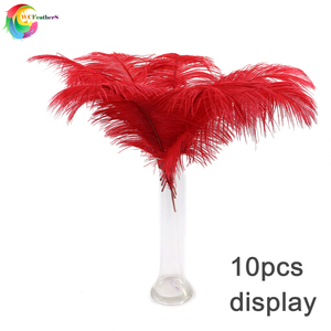Image 3 - Wholesale 10 Pcs/Lot baby pink Ostrich Feathers For Crafts 35 40CM Carnival Costumes Party Home Wedding Decorations Plumes