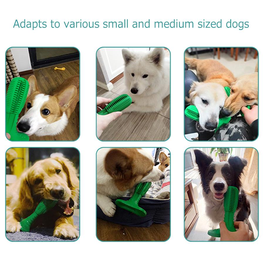 Cepillo de dientes para perros resistente a la mordedura 7