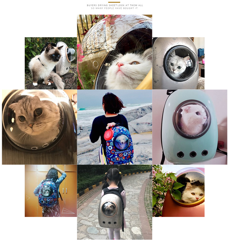 Astronaut Space Capsule Backpack Cat Carrier