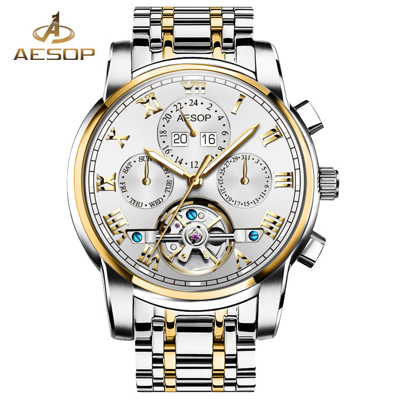 AESOP Watch Men Automatic Mechanical Wristwatch Hollow Skeleton Male Clock Famous Brand Stainless Steel Relogio Masculino Box 27 fashion top brand watch men automatic mechanical wristwatch stainless steel waterproof luminous male clock relogio masculino 46